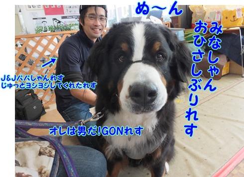 DSCF9469.jpg