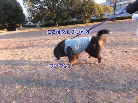 DSCF9513.jpg