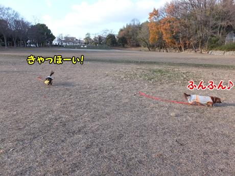 DSCF9699.jpg