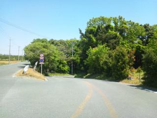 峠っぽい道1