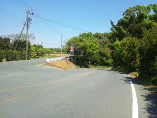 峠っぽい道2