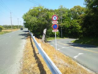 峠っぽい道3