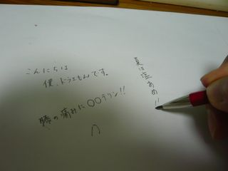 P1040723.jpg