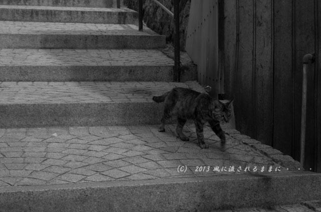 坂の町 尾道ぶらり歩き8