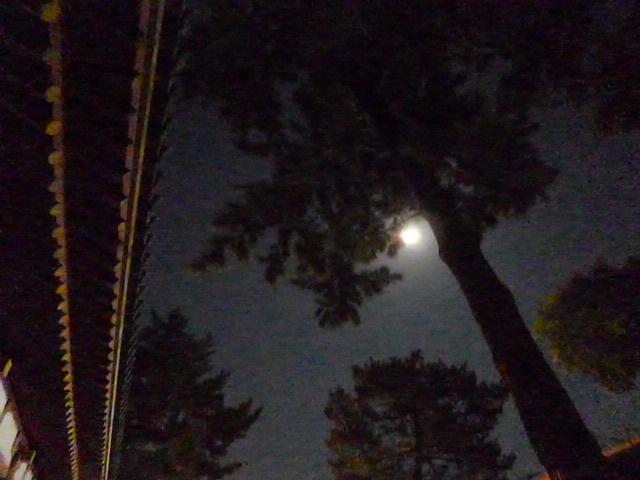 そうです この日はお月見でしたね