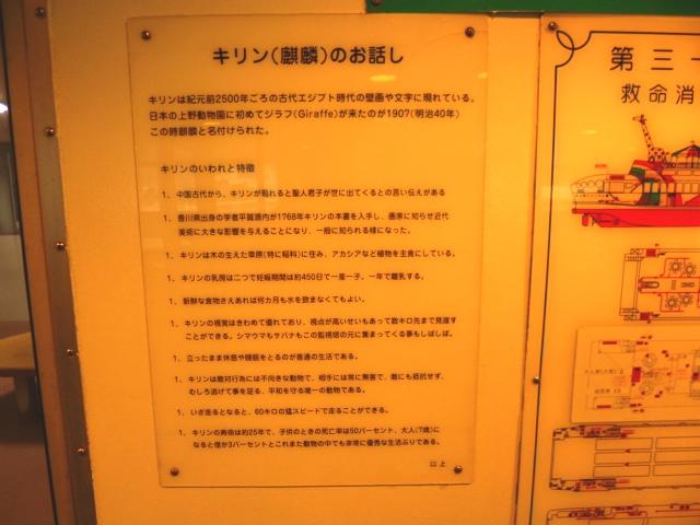 でも日本初のキリンは翌年に死んでしまったんだそうです
