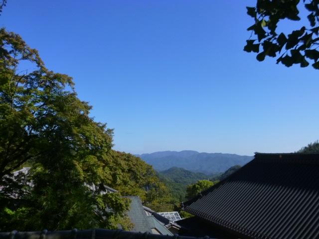 空,真っ青です