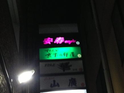 52920139期会5月例会S9