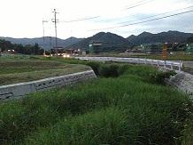 6132013ほたるSS1