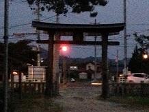 6132013ほたるSS2