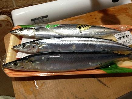 8312013秋刀魚S1