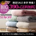 390-big-hotel[1]