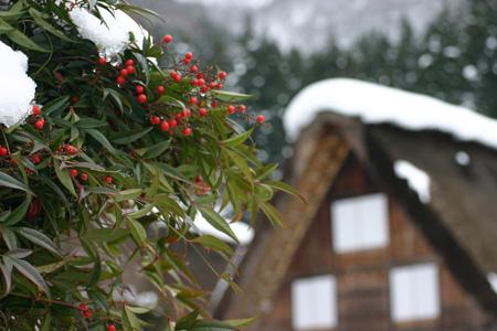 世界文化遺産として多くの観光客が訪れている白川郷・合掌造り集落の冬の風景 ①
