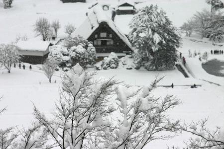 何ていう美しい冬景色なんだろう ~世界遺産 白川郷合掌集落~①