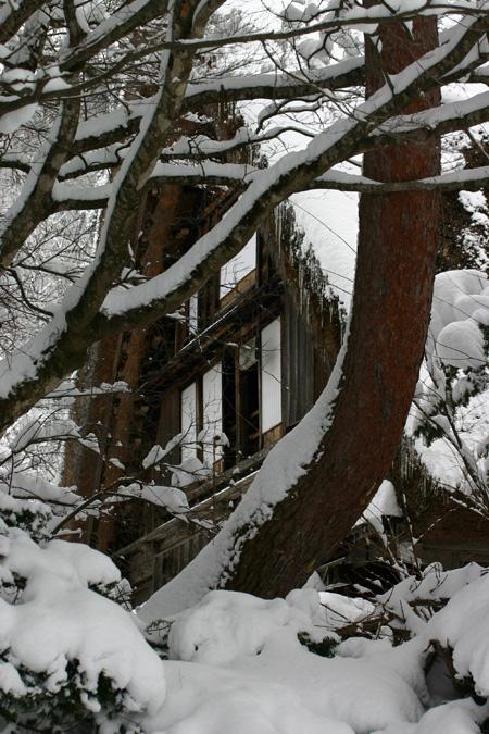 何ていう美しい冬景色なんだろう ~世界遺産 白川郷合掌集落~④