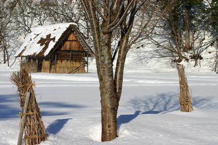 冬休みの旅行~スキー&温泉&合掌集落で冬の世界遺産 白川郷 思いのまま~⑫