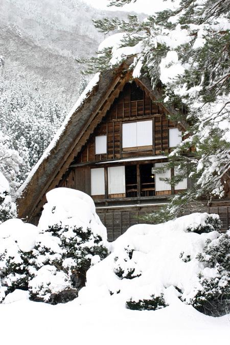 見渡す限りの白銀~世界遺産 白川郷~昔の風情そのままののんびりとした風景が、今は真っ白な雪に覆われています ③