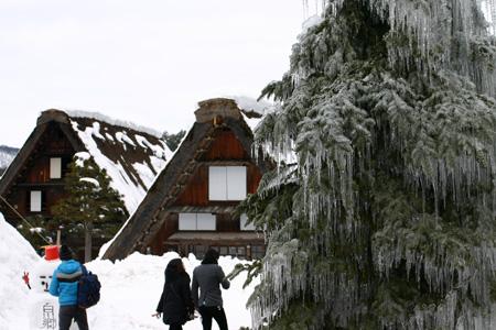 1月18日土曜日に白川郷ライトアップ開催!(白川村ライブカメラが見られない為、茅葺き屋根に雪が積もっている情報が知りたいと思いますので。。)今日の世界遺産白川郷荻町合掌集落の風景です。 ⑨