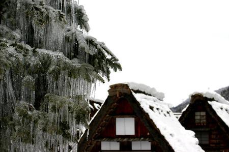 明日開催! 世界遺産の白川郷ライトアップ~キーンと張りつめた冬の 空気感の中、 神秘的な幻想な世界遺産を瞼に焼き付けて下さい ⑩