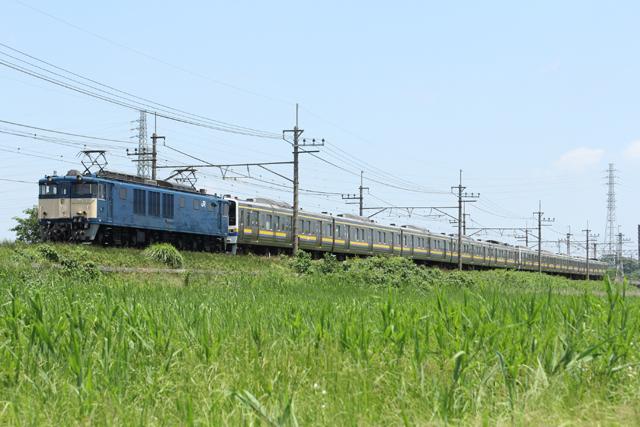 _MG_7871.jpg