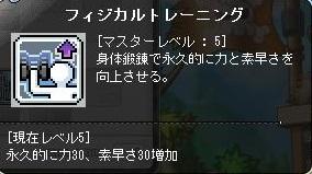 Maple131211_203649.jpg