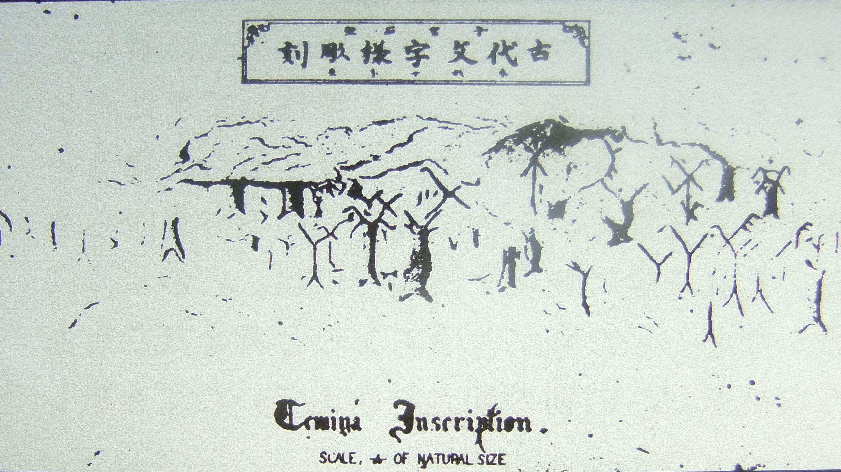 temiya009.jpg