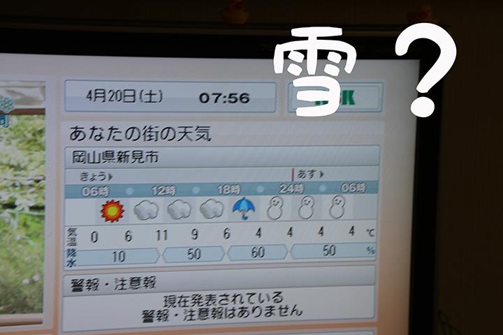 IMG_5560.jpg