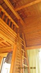 bungalow indoor2 (450x800)
