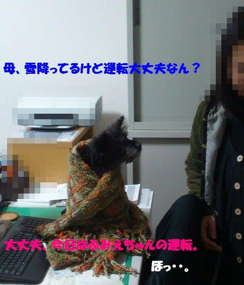 DSC_1259_20130803111629be4.jpg