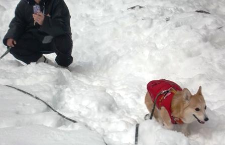 雪遊び 21