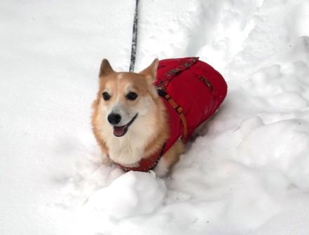 雪遊び 20