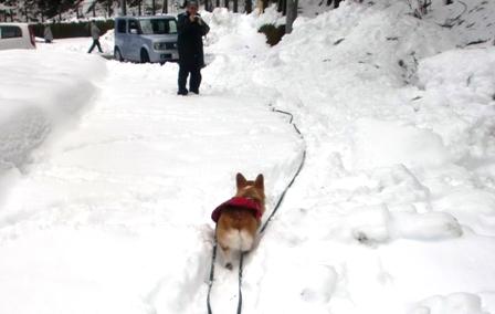 雪遊び 27