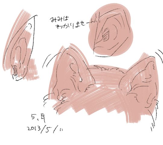 8_20130511133026.jpg