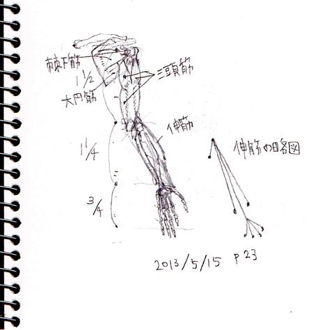 8_20130525203618.jpg