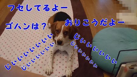009_convert_20130701215515.jpg