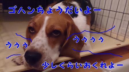 021_convert_20130630230715.jpg