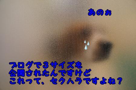 DSC02692_convert_20130517222405.jpg