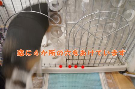 DSC09002_convert_20130603162649.jpg