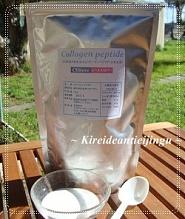 Collagen001_20130821100753714.jpg