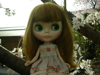 桜×ベアトリス3