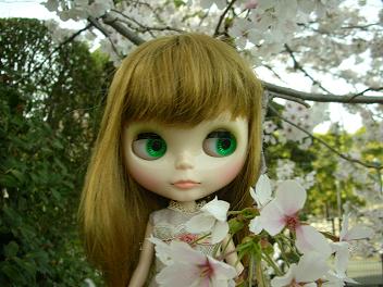 桜×ベアトリス4