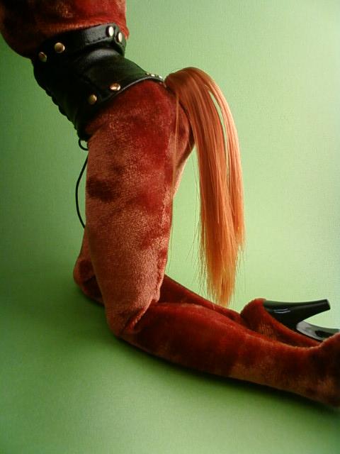 pony_tail_c.jpg