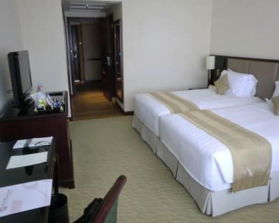 ホテルエクアトリアル デラックスルーム客室2