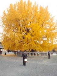 2013年12月2日西本願寺1