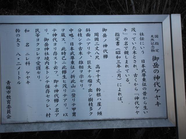 神代ケヤキの看板
