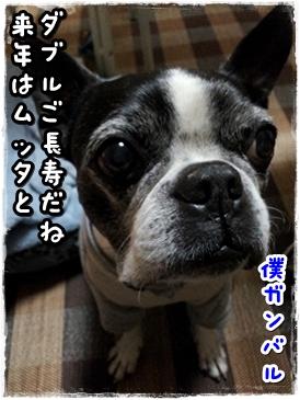 20131129_210447.jpg