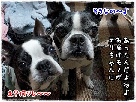 20131129_210629.jpg