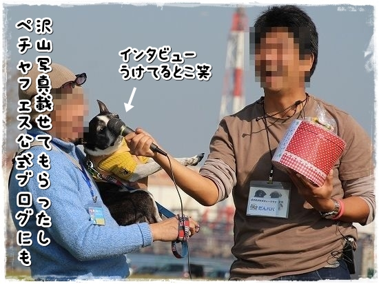 ペチャフェス②