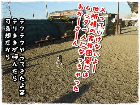 DSCN9530.jpg
