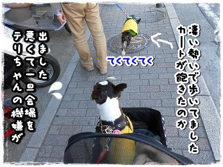 DSCN9566.jpg